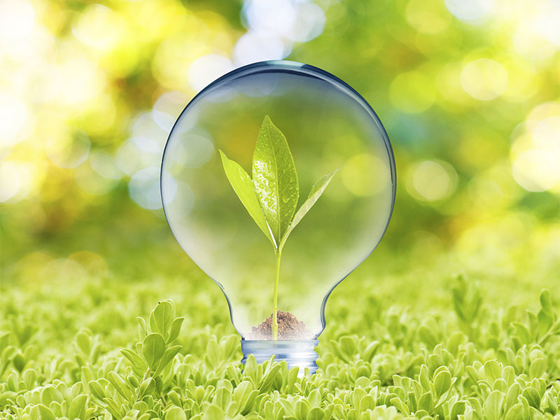 3 Easy Ways to Save Energy at Home