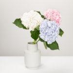 flowers-vase-decor-interior-870512