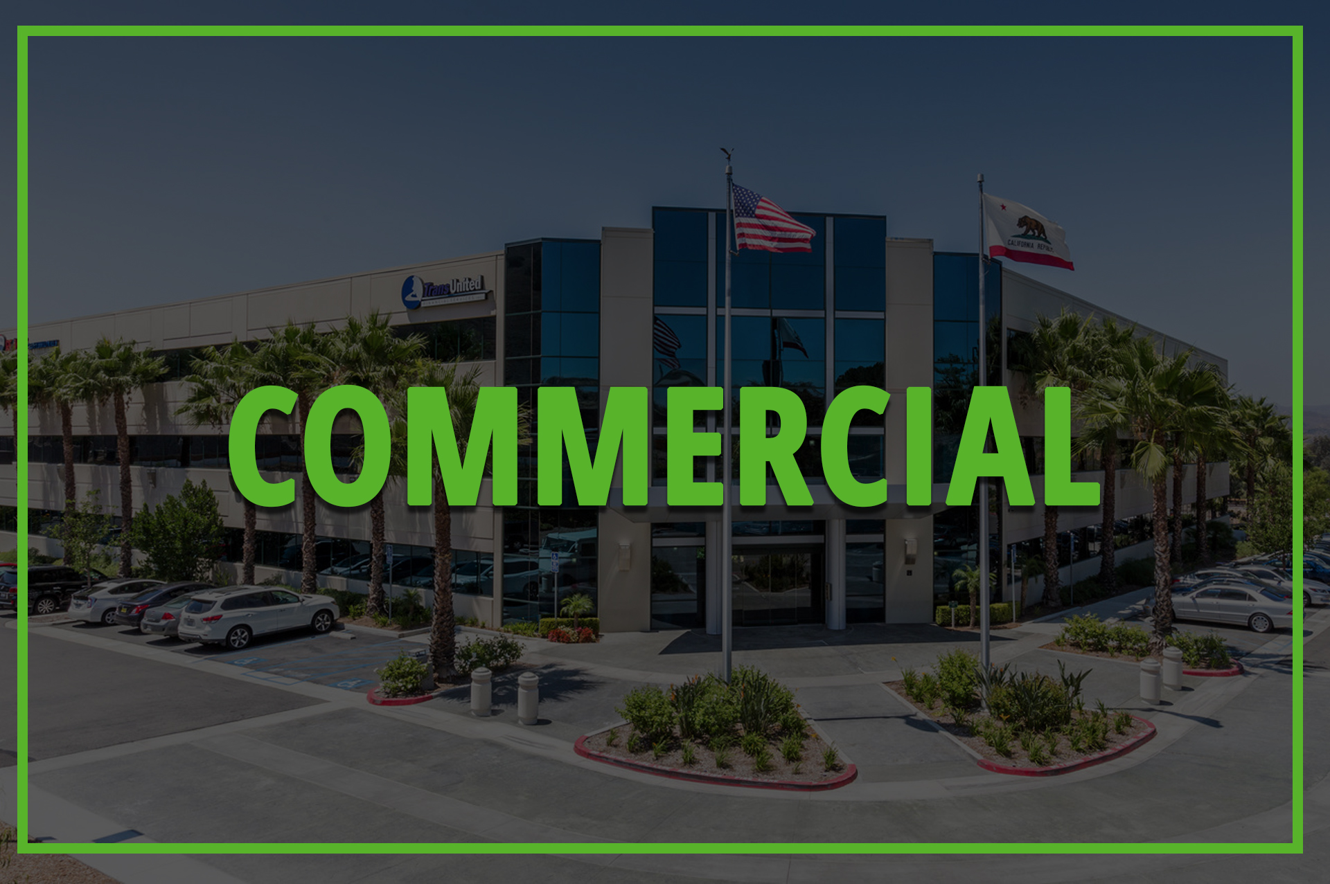 Commercial Tree Services 1