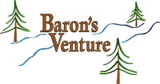 BV-small-logo