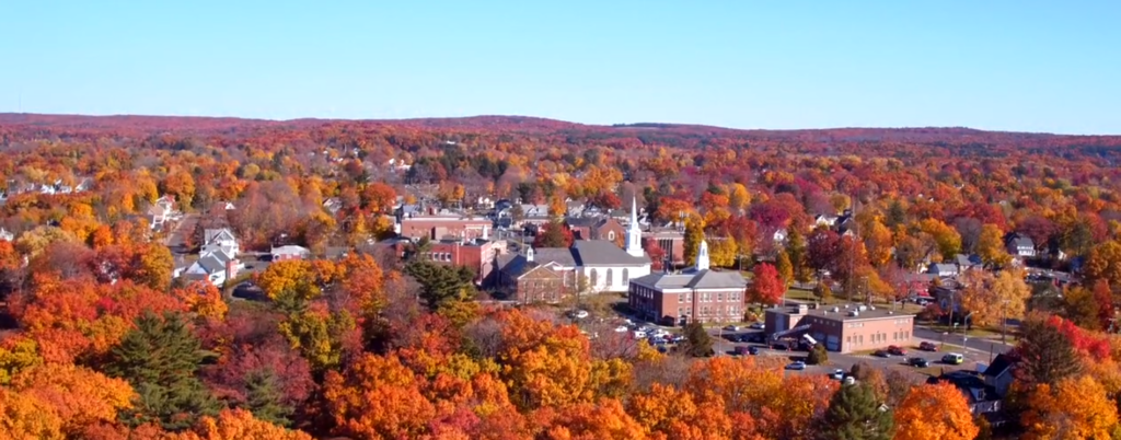 view of the town of Manchester and trees