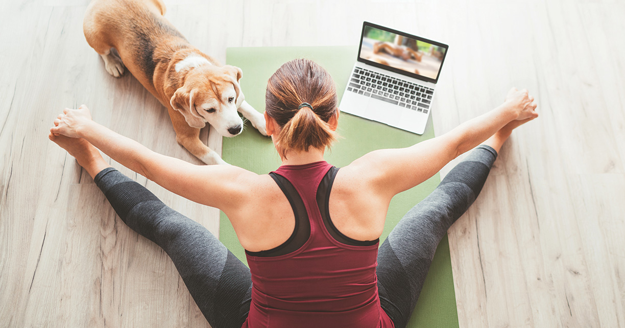 woman streching on yoga mat with dog and laptop