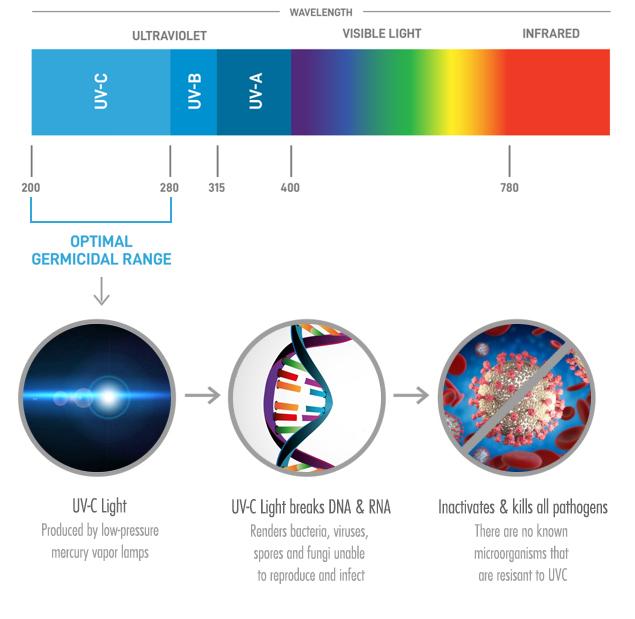 UVC disinfection light explainer graphic