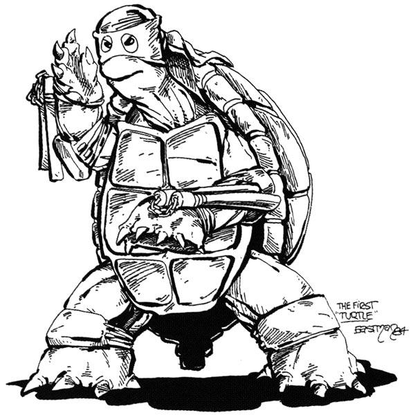 1st turtle=ninja