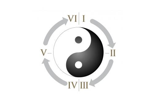 Star Wars Ying Yang Ring Thoery