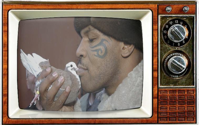SMC-TV-LOGO-Mike Tyson 24 Pegoen Fancy