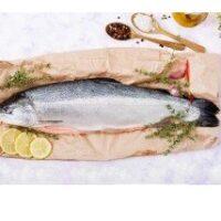 Fresh Atlantic Salmon (4kg to 4.8kg)