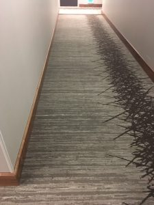commercial carpet cleaning Orange County