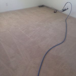 carpet cleaning newport beach