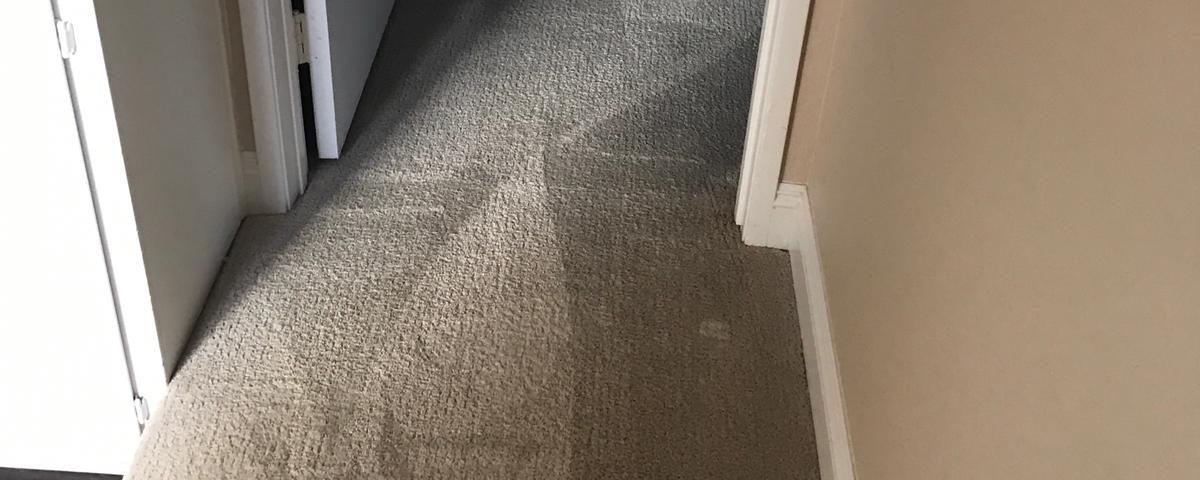carpet cleaning in laguna hills california