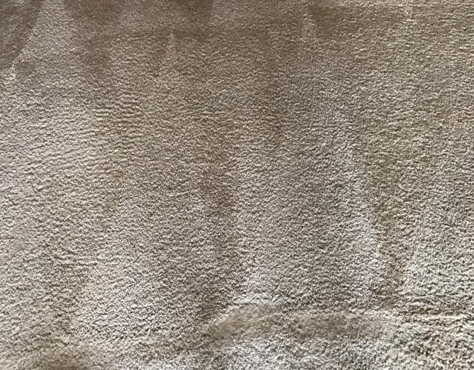 carpet cleaning in san juan capistrano california