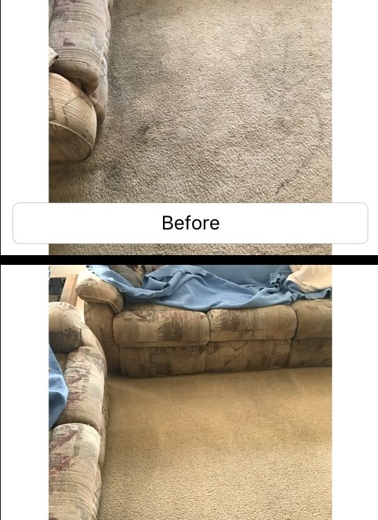 carpet cleaning in trabuco canyon california