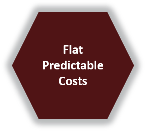 Lifetime Services - Flat Predictable Costs