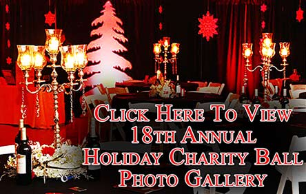 18th-Annual-Holiday-Charity-Ball---444-Q38