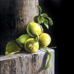 photo Didier Marie Le Bihan - citrons