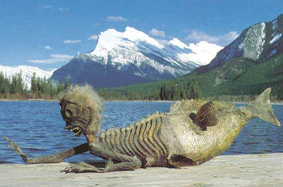 Lake Minnewanka Mermonster?
