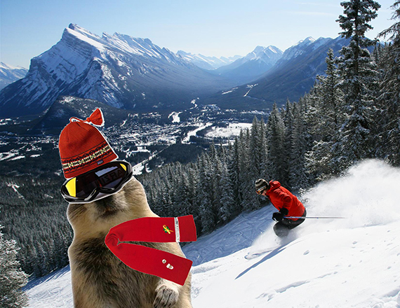 Banff Squirrel is always dressed right for the season.