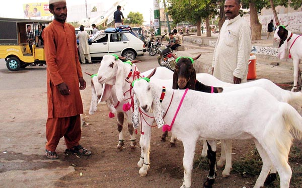 Federal Government announced Holidays for Eid-ul-Adha 2015