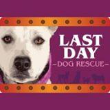 Last Day logo