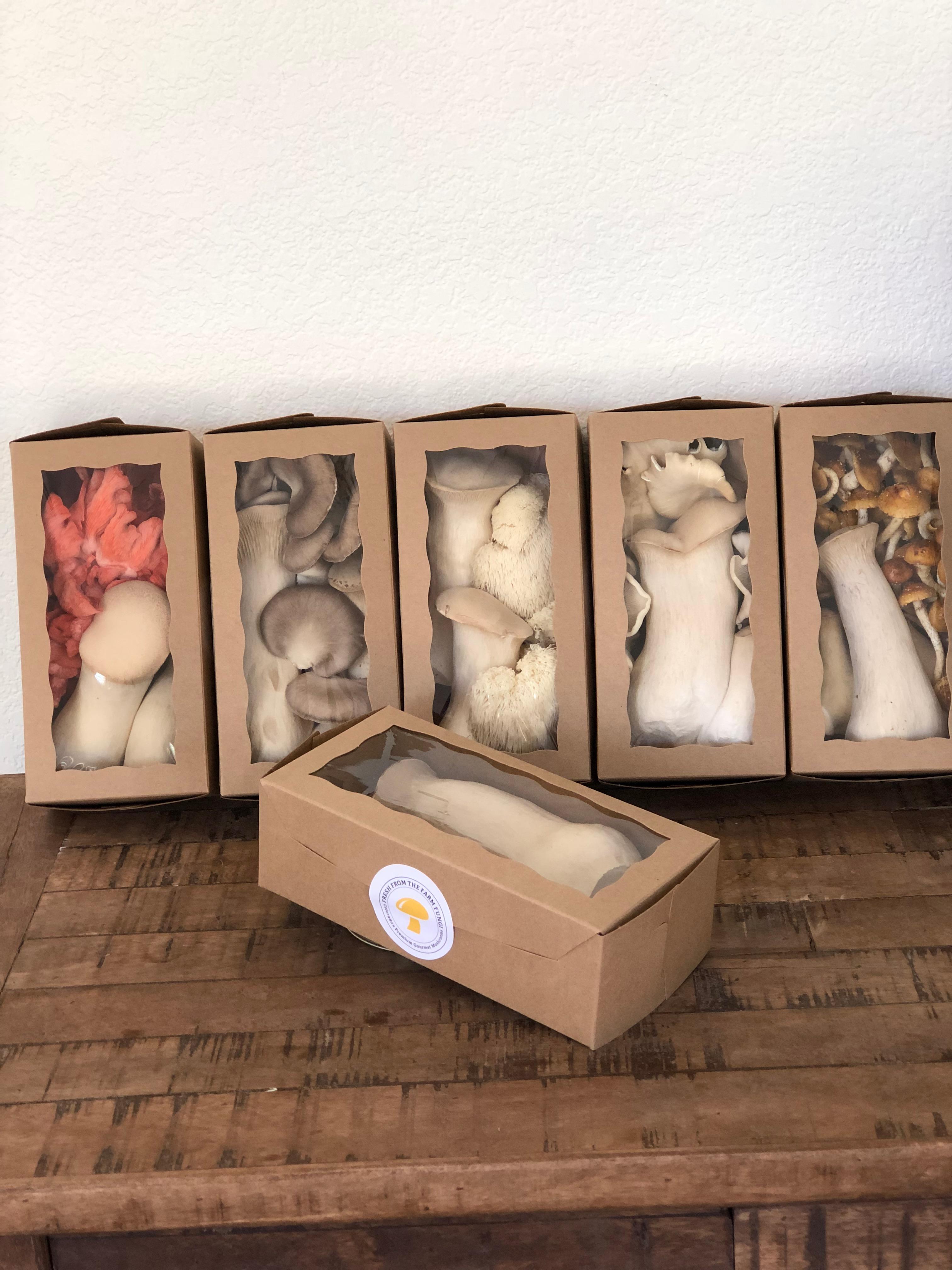 fresh from the farm fungi gourmet mushroom boxes