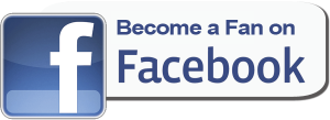 Facebook-Fan-Page-logo