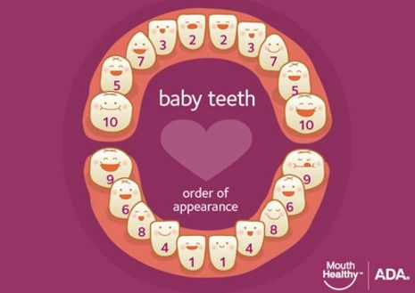 ADA-baby-teeth-eruption-chart