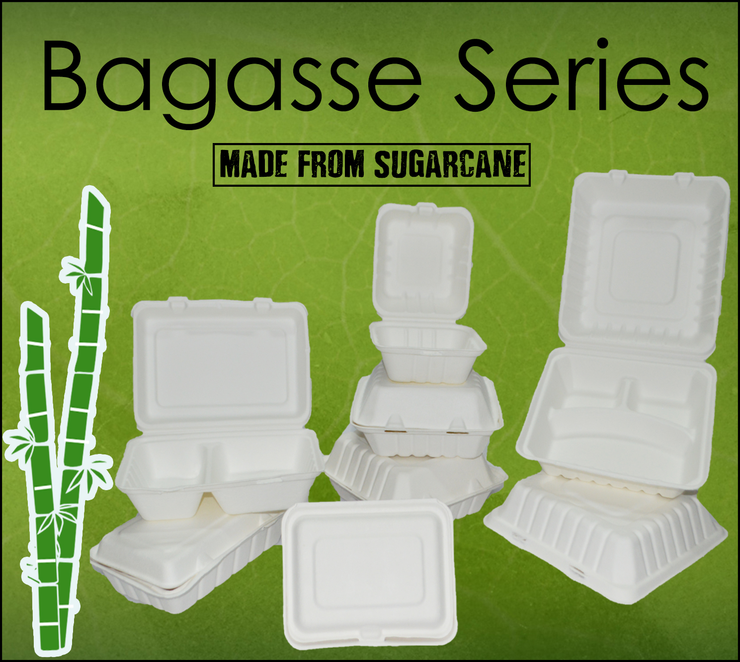bagasse SERIES with pic web1
