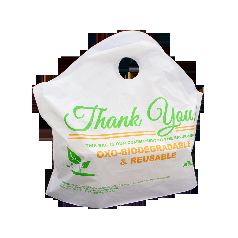 Biopack-Bag-6242-xxl
