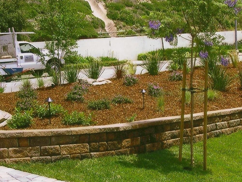 Ed's Landscaping maintenance-garden bed-sod