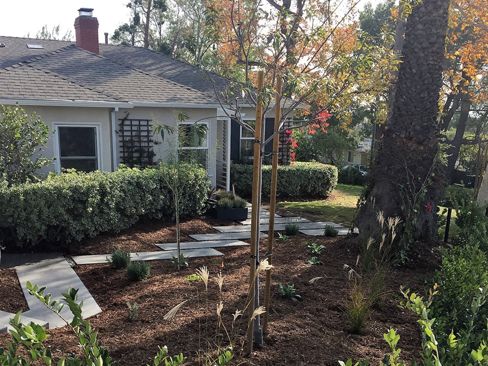 Ed's Landscaping New York St. La Crescenta Project
