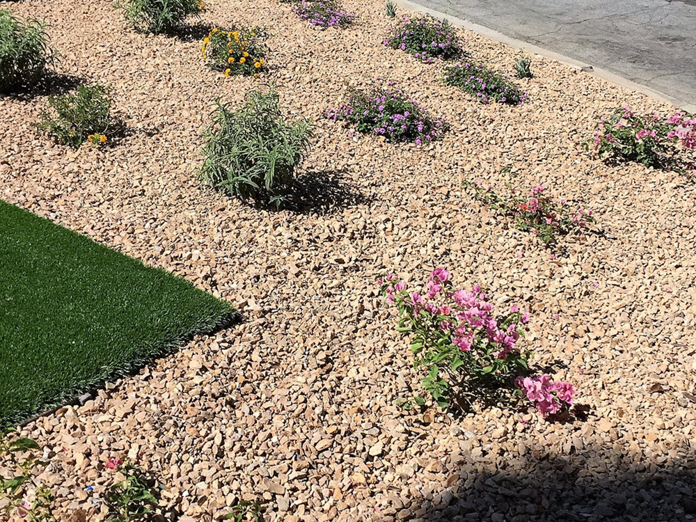 Ed's Landscaping Planting with sod and crushed stone ground cover