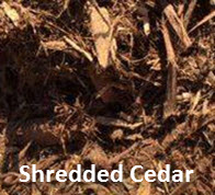 Shredded Cedar
