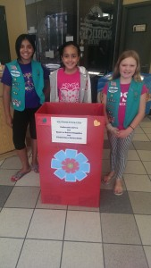Girlscout collection box