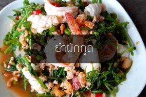 สูตรเมนูอาหารยำผักกูด จี๊ดจ๊าดอาหารพื้นบ้านแซ่บนัวสไตล์ยำไทย