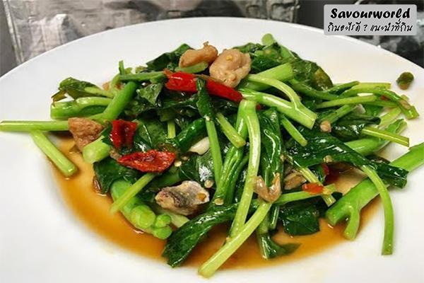 """ความอร่อยในตำนานทำได้ไม่ยาก""""เมนูผัดคะน้าปลาอินทรีย์"""" กินอะไรดี เมนูอาหาร ร้านอาหารอร่อย Nightlife รีวิวคาเฟ่ ร้านอาหาร-คาเฟ่ ที่กิน-ที่พัก แนะนำร้านอาหาร อาหาร-สุขภาพ savourworld.com เมนูผัดคะน้าปลาอินทรีย์"""
