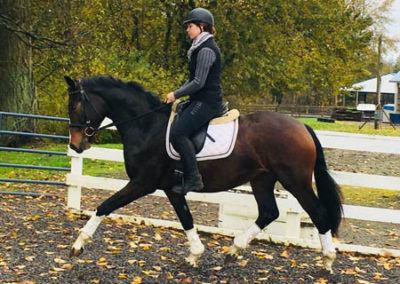 Hot to Trot Trot1 450 Fall 2017