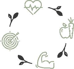 Functional Nutrition Wheel