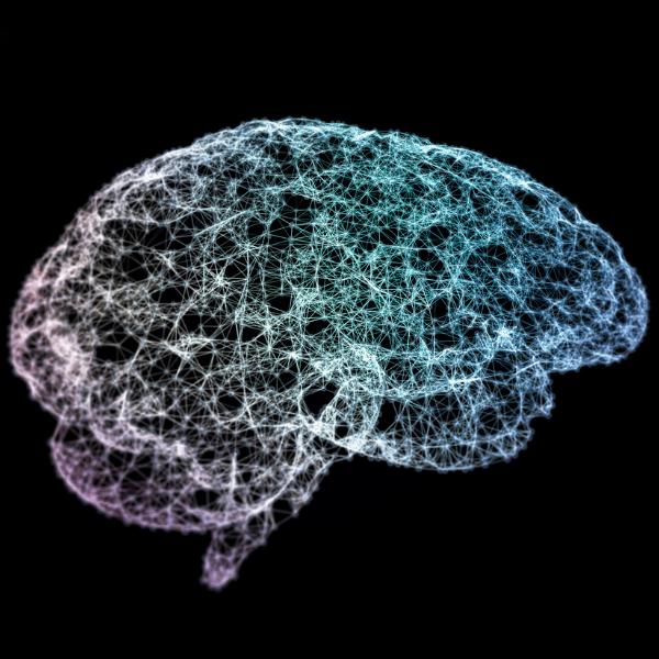 hompage-brain