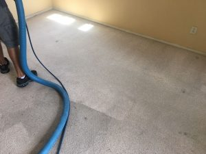 carpet cleaning palos verdes