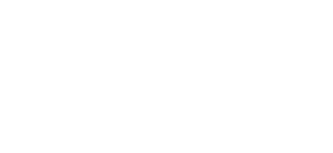 DNB_Academy_old_logo_Transparency