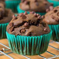 World's Best Dark Chocolate Pumpkin Muffins Recipe