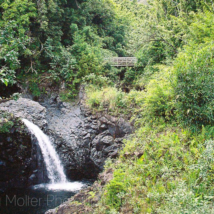 Haleakala National Park - Pools of Oheo