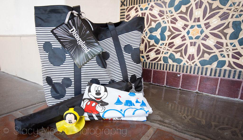 8 Tips for Rainy Days at Disneyland