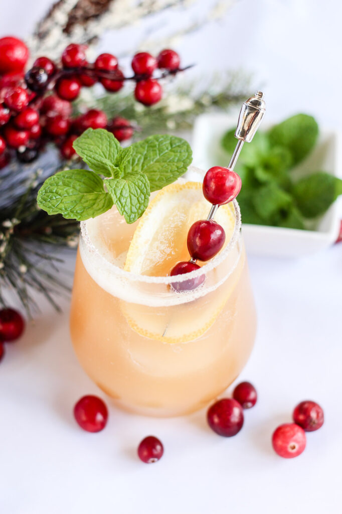 Cranberry Mint Cocktail