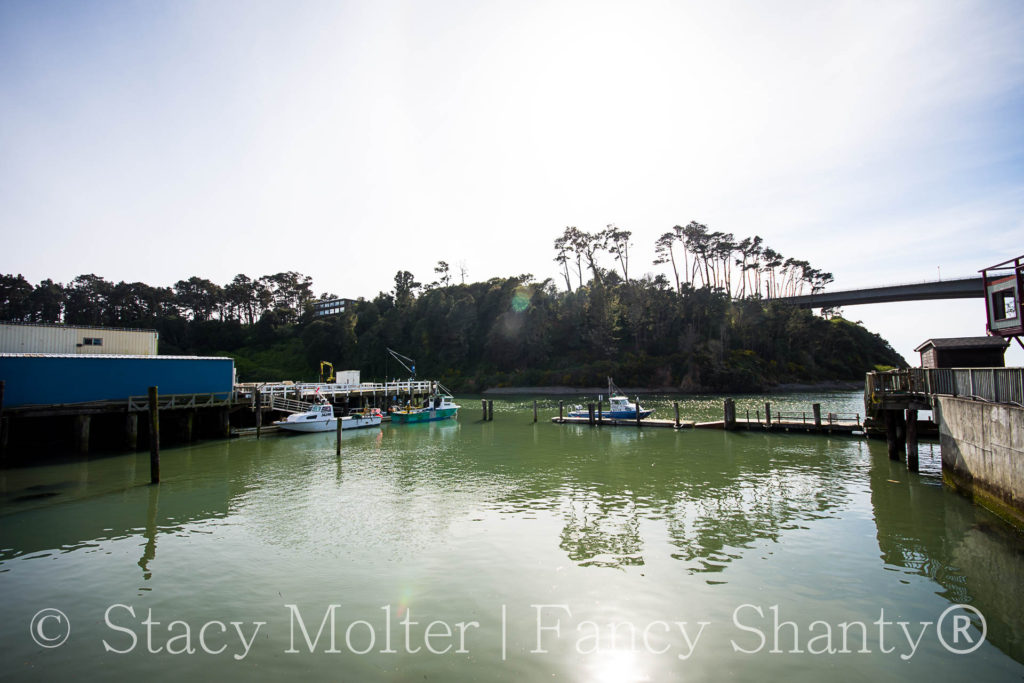 5 Epic Places to Visit in Mendocino