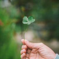 7 Ways to Celebrate St. Patrick's Day with Kids