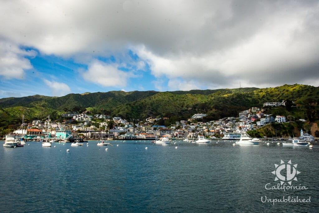 Santa Catalina Island - The Ultimate Family Adventure Getaway