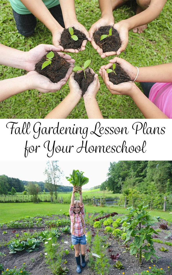 Fall Gardening Lesson Plans for Your Homeschool 7