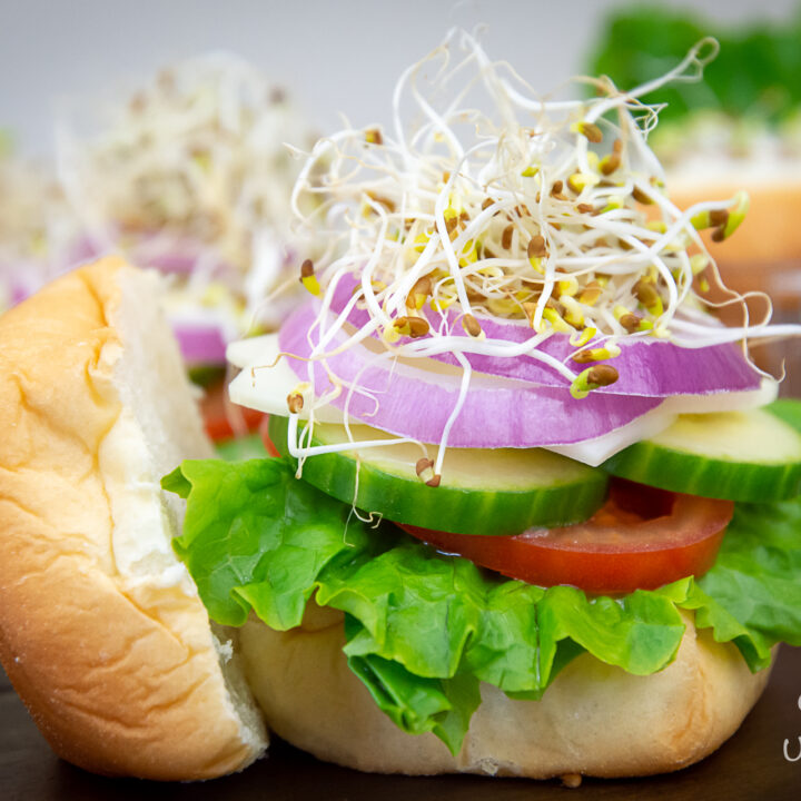 Veggie Sandwich Creative Back to School Lunch Ideas for Kids