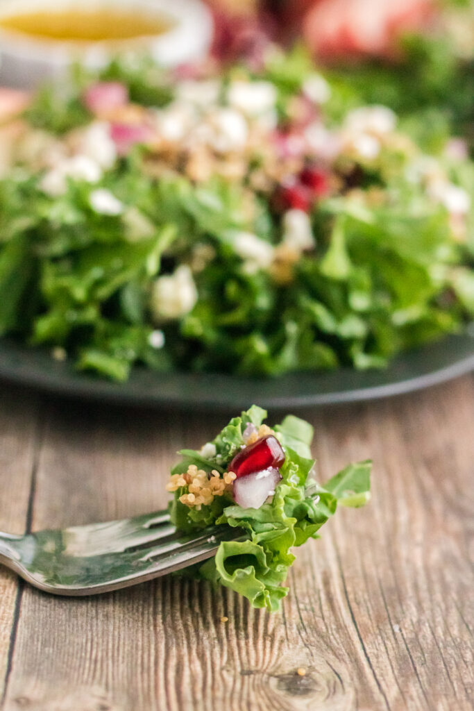 Words cannot describe how delicious this kale and quinoa salad is. Fresh kale leaves are topped with sweet crisp apples, nutritious quinoa, feta cheese, and pomegranate perils, then topped with a simple lemon dressing creating a delicious salad anytime of year!
